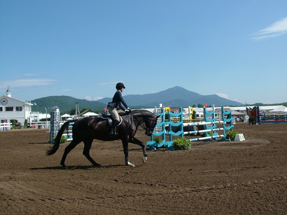 Lake placid horse shows go cottage for Places to go horseback riding near me