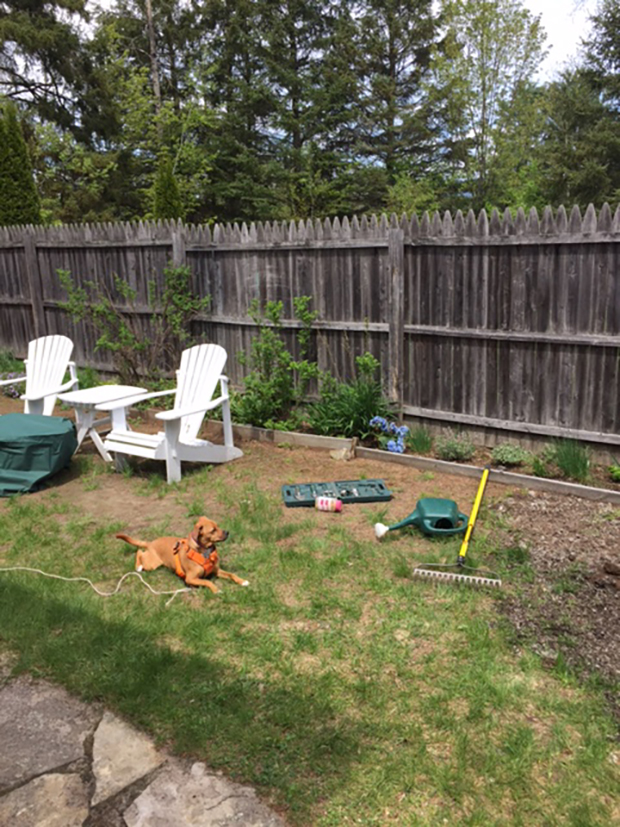 Flagstone Patio With Grass Intended Img4320jpg Lets Build Flagstone Patio Sphere Gocottage